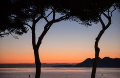 Sonnenaufgang durch Schattenbildbäume Stockfoto