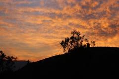 Sonnenaufgang eines dankbaren Tages Lizenzfreies Stockfoto