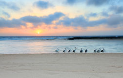 Sonnenaufgang am Eingang Nord, Australien Stockfoto