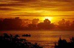 Sonnenaufgang, Fischerboot und Flugwesenvögel Stockfotografie