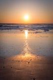 Sonnenaufgang in Florida Stockbilder