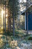 Sonnenaufgang gesehen im frorest hinteren Holzhaus, Finnland Stockbilder