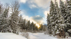 Sonnenaufgang hinter einem Wintermärchenland Stockbilder