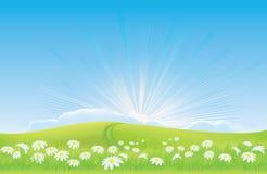 Sonnenaufgang hinter Feld der Gänseblümchen - Hoffnung Lizenzfreie Stockfotos