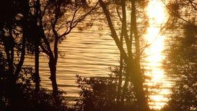 Sonnenaufgang-Hintergrund 1 stock video footage