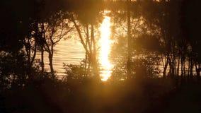 Sonnenaufgang-Hintergrund 2 stock video