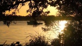 Sonnenaufgang-Hintergrund 4 stock footage