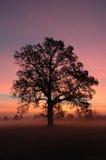 Sonnenaufgang im Bezirk OH- Stockfotos