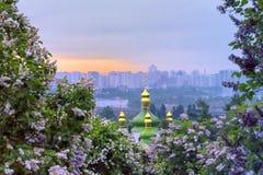 Sonnenaufgang im botanischen Garten Lizenzfreies Stockfoto