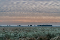 Sonnenaufgang im Nationalpark Drentsche AA Lizenzfreies Stockfoto