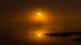 Sonnenaufgang im Nebel Stockfotografie