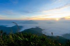 Sonnenaufgang im nebelhaften früh Berg der Morgenzeit Stockbild