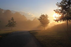Sonnenaufgang im nebeligen Morgen Lizenzfreie Stockfotos