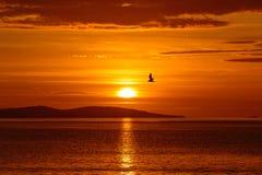 Sonnenaufgang am 1. Januar 2014 Stockfotografie