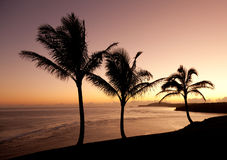 Sonnenaufgang in Kauai stockfotografie
