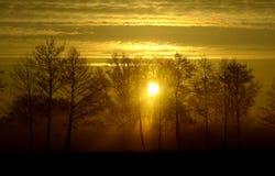 Sonnenaufgang in ländlichem Holland Lizenzfreie Stockfotos