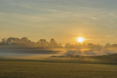 Sonnenaufgang mit Bodennebel Stockfotos