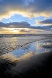 Sonnenaufgang mit einzelnem Vogel Lizenzfreie Stockfotos