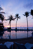 Sonnenaufgang mit Palmen stockbild