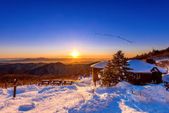 Sonnenaufgang mit schönem Blendenfleck und Schattenbildern von Vögeln an Deogyusan-Bergen im Winter Korea Lizenzfreie Stockfotografie