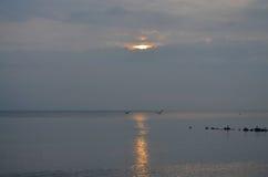 Sonnenaufgang mit Seemöwen stockbilder