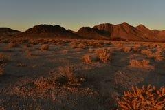 Sonnenaufgang Mojavewüste Nevada-Stadt von Pahrump Lizenzfreies Stockfoto