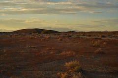 Sonnenaufgang Mojavewüste Nevada-Stadt von Pahrump Stockfotos