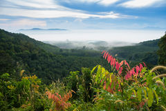 Sonnenaufgang nebelhaft und Berg Lizenzfreie Stockfotografie