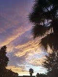 Sonnenaufgang in Orlando lizenzfreies stockbild