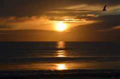 Sonnenaufgang in Ostsee Lizenzfreies Stockbild