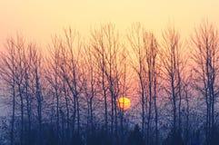 Sonnenaufgang in Peking Stockfotografie