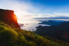 Sonnenaufgang an Phu-Chi-Fa Stockfoto