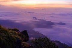 Sonnenaufgang am Phu-Chi-Fa Forest Park Stockfotos