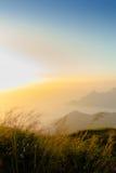 Sonnenaufgang an phu Chi-Fa-Klippe Chiang Rai Thailand Stockbilder