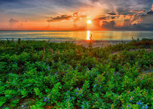 Sonnenaufgang in Porzellanmeer in HDR Stockfotografie
