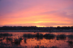 Sonnenaufgang Ridgefield 1 Lizenzfreie Stockbilder