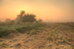 Sonnenaufgang am Sammlungsweg stockfotos