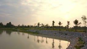 Sonnenaufgang am See, Mann stellte Wasserreservoir mit Reis her aufzufangen und Palmehintergrund stock video