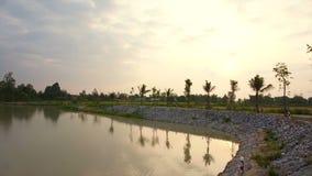 Sonnenaufgang am See, Mann stellte Wasserreservoir mit Reis her aufzufangen und Palmehintergrund stock video footage