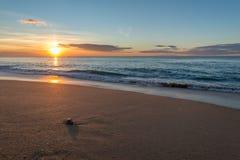 Sonnenaufgang am Strand Beaing aufgepasst durch eine Krabbe Stockfotografie