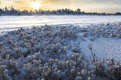 Sonnenaufgang an Sumpf Kõnnu Suursoo Stockfoto