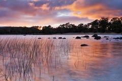 Sonnenaufgang Tasmanien-St. CLair Red Lizenzfreie Stockfotografie