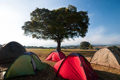 Sonnenaufgang am tented Lager Lizenzfreie Stockfotos