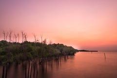 Sonnenaufgang am thailändischen Golf Stockbilder
