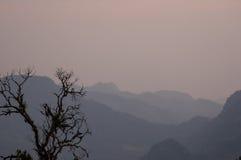 Sonnenaufgang und Baumschattenbild Stockfotografie