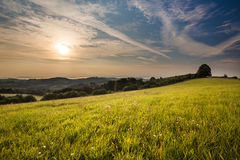 Sonnenaufgang und grüne Wiese Lizenzfreie Stockfotografie