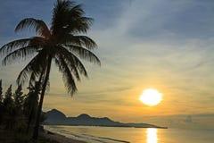 Sonnenaufgang und Kokosnuss Stockfotos
