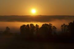 Sonnenaufgang und Nebel Lizenzfreie Stockfotos