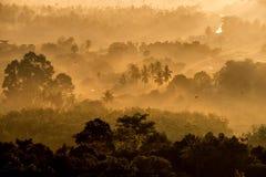Sonnenaufgang und Nebel Stockbild