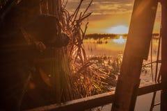 Sonnenaufgang von den Vorhängen Stockfotografie